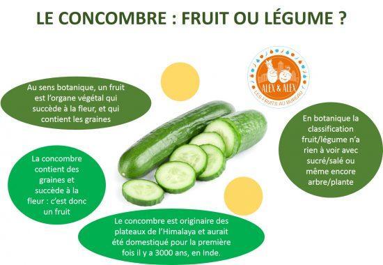 Concombre fruit ou légume