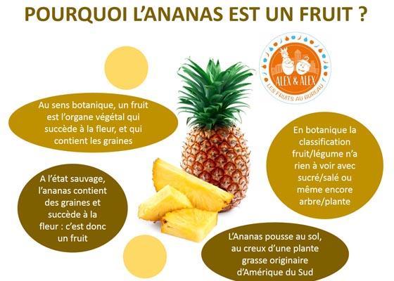 Ananas : fruit ou légume ?