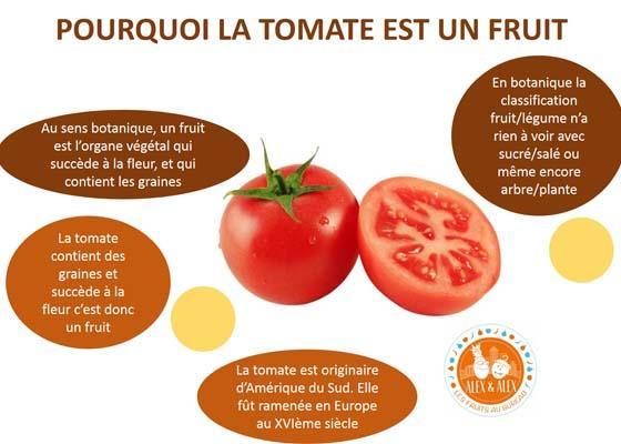 La tomate : fruit ou légume ? Pourquoi la tomate est-elle un fruit !