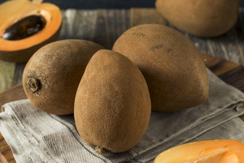 Sapotille : fruit du sapotillier