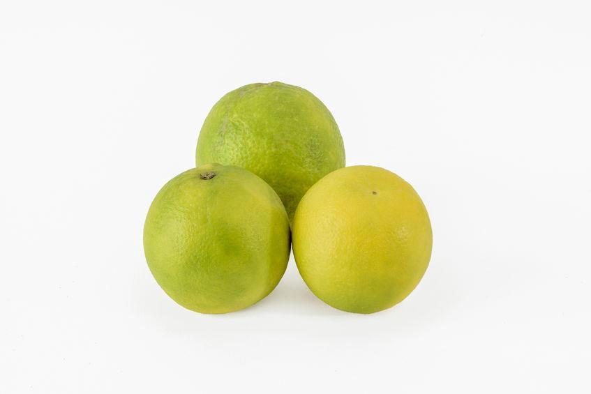 3 limettes ou mosambi