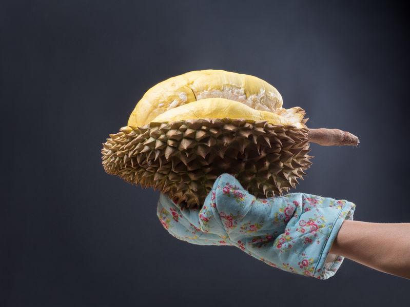 durian dans une main gantée