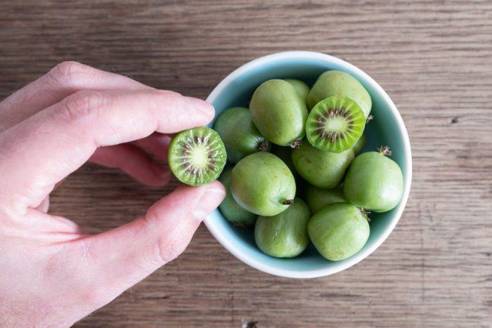 Le Kiwaï : le fruit le plus facile à manger au bureau ?