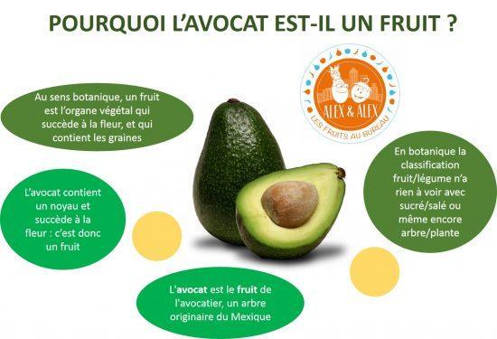 Avocat fruit ou legume
