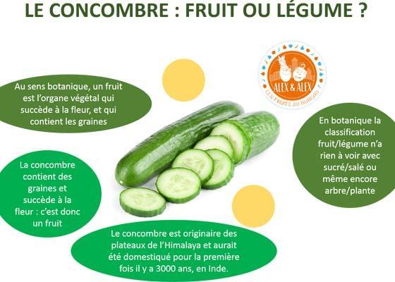 Concombre : fruit ou légume ? Pourquoi le concombre est considéré comme un fruit ?