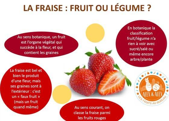 Fraise : fruit ou légume ? Pourquoi la fraise est-elle un faux-fruit !