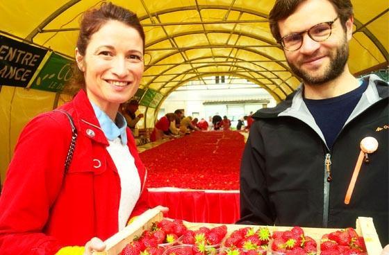 La Route des Fruits : la fraise des bois de Beaulieu