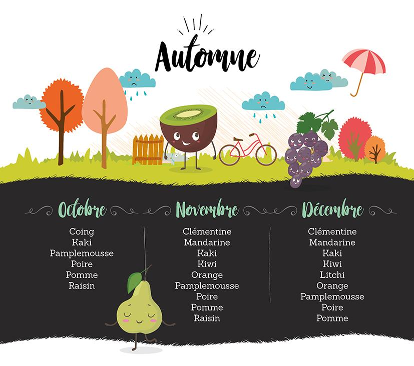 Infographie fruits automneBD