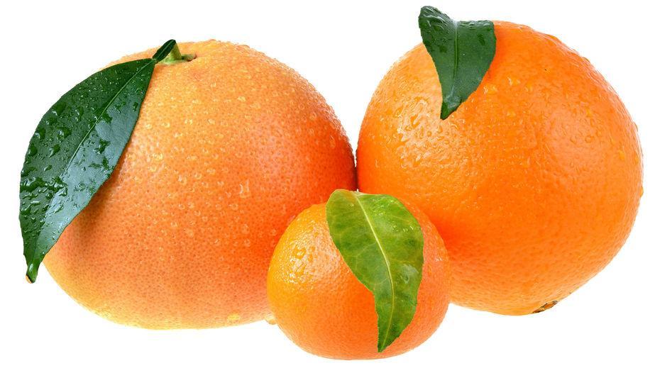 Pamplemousse, orange et mandarine