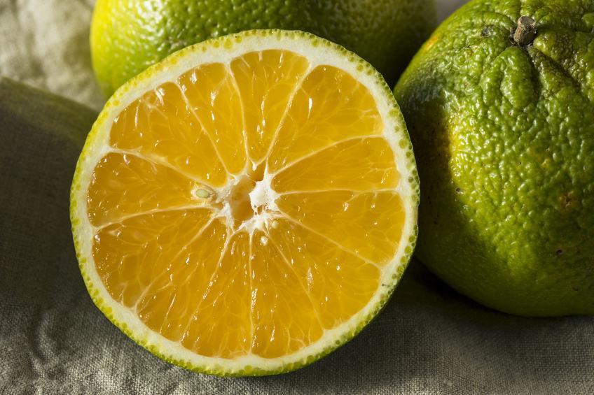 Ugli fruit - marque de commerce