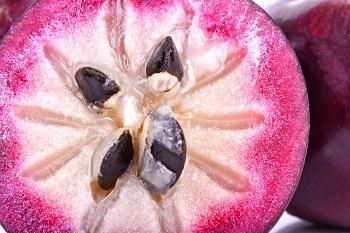 Caïmite (fruit) : guide complet