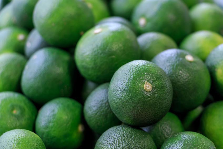 sudachi (fruit) : description