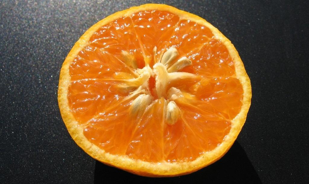 tangor, chair orange et pepins