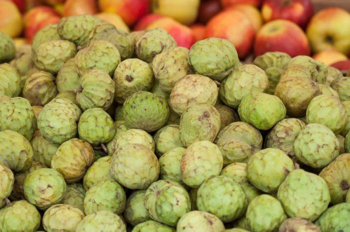 Cherimoya (fruit) : guide complet