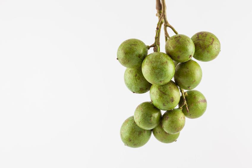 belle grappe de quenette fruit antillais