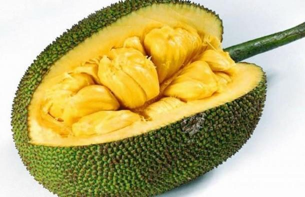 Fruits en J : Jacque ou Jacquier