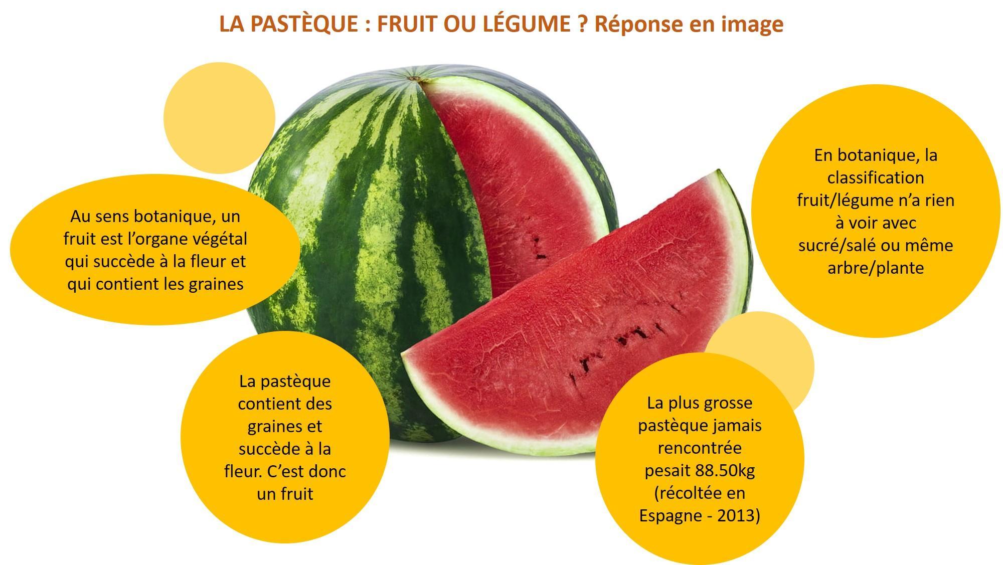 Pastèque fruit ou légume